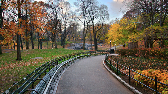 Upper West Side and Central Park
